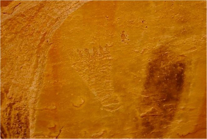 Mogollon Culture 6-toed foot