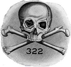 Image result for skull and bones 232